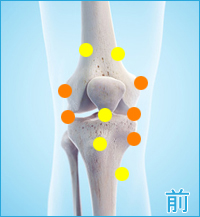 膝の前側の痛み(内側側副靭帯,外側側副靭帯)